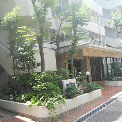芦屋シティハイツ204号室 賃貸